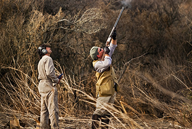 Argentina Dove Hunting - Shooter Aiming High