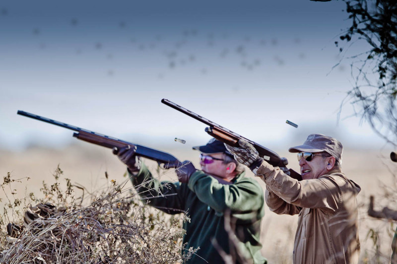 Argentina-Dove-Hunting---2-Shooters